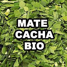 MATE CACHA BIO
